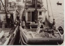 Hoonah Fishing Boats Side by Side