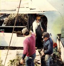 Herring Egg Fishing George Lindoff, James Jack and George Martin
