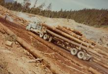 Log Truck in Sort Yard
