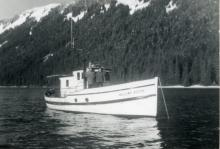William Booth Anchored Up Neka Bay