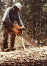 Hoonah Logger Working a Chainsaw